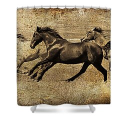 Western Flair Shower Curtain