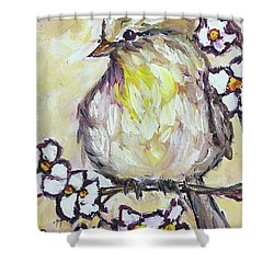 Western Kingbird Chick  Shower Curtain