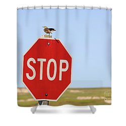 Western Meadowlark Singing On Top Of A Stop Sign Shower Curtain by Louise Heusinkveld
