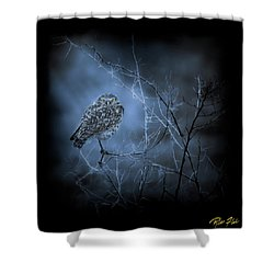 Shower Curtain featuring the photograph Western Owl Gloom by Rikk Flohr