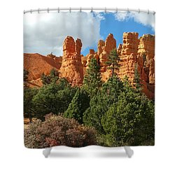 Western Skies Shower Curtain
