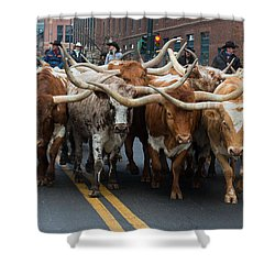 Western Stock Show Shower Curtain