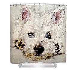 Westie Shower Curtain by Carol Blackhurst
