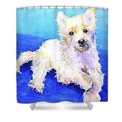 Westie Painting In Watercolor  Shower Curtain