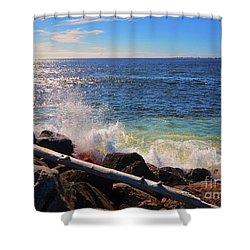Westport Waves Shower Curtain