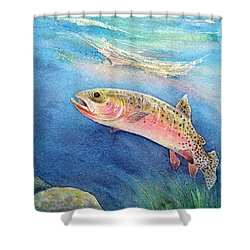 Westslope Cutthroat Shower Curtain by Gale Cochran-Smith