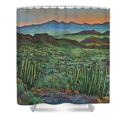 Westward Shower Curtain by Johnathan Harris