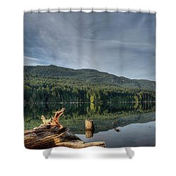 Shower Curtain featuring the photograph Westwood Lake by Randy Hall