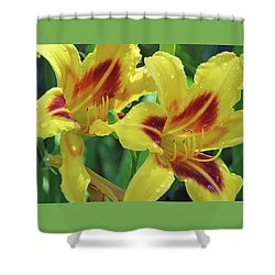 Wet And Wild Daylily Duo Shower Curtain