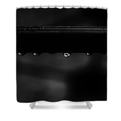Wet Bar Shower Curtain by Richard Rizzo