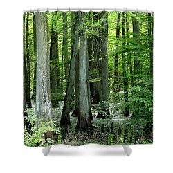 Shower Curtain featuring the photograph Wet Bottoms by Nicholas Blackwell