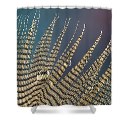 Wet Drop On Wood Duck Feather Shower Curtain