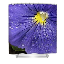 Shower Curtain featuring the photograph Wet Pansy by Jean Noren