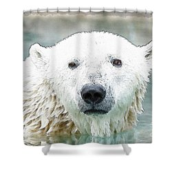 Wet Polar Bear Shower Curtain