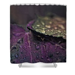 Wet Purple Leaves Shower Curtain by Bonnie Bruno