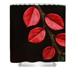 Wet Scarlet Shower Curtain