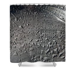Wet Steel Shower Curtain by Keith Armstrong