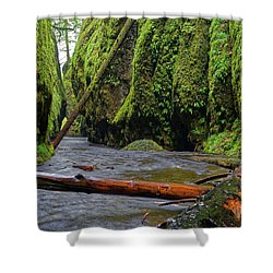 Shower Curtain featuring the photograph Wet Trail by Jonathan Davison