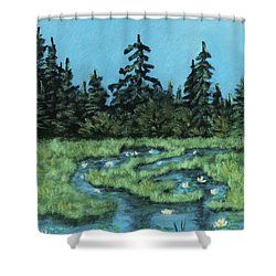 Shower Curtain featuring the painting Wetland - Algonquin Park by Anastasiya Malakhova