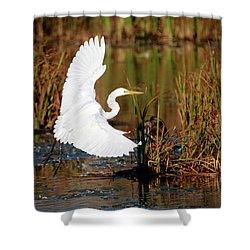 Wetland Landing Shower Curtain