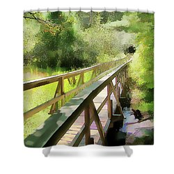 Shower Curtain featuring the photograph Wetland Walk by Betsy Zimmerli