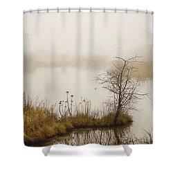 Shower Curtain featuring the painting Wetland Wonders Of Winter by Jordan Blackstone
