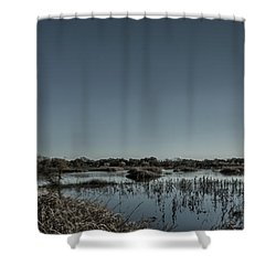 Wetlands Desaturated  Shower Curtain