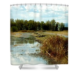 Wetlands Shower Curtain by Pamela Patch