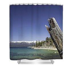 Whale Beach Shower Curtain