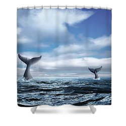 Whale Of A Tail Shower Curtain