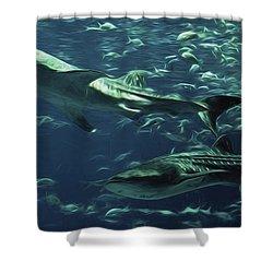 Whale Shark Couple Shower Curtain