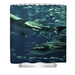 Whale Shark Couple Shower Curtain