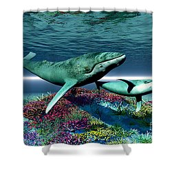 Whale Song Shower Curtain by Corey Ford