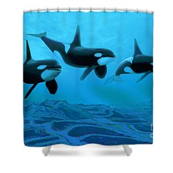 Whale World Shower Curtain by Corey Ford