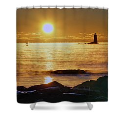 Whaleback Light 264 Shower Curtain