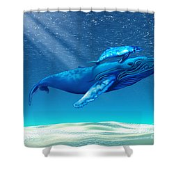 Whales Shower Curtain by Corey Ford