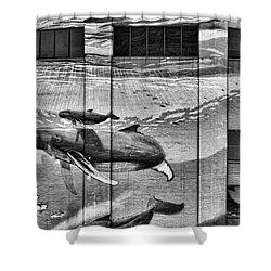 Whales Mural Building Penn Shower Curtain