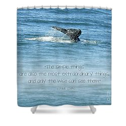Shower Curtain featuring the photograph Whale's Tail by Peggy Hughes