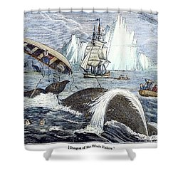Whaling, 1833 Shower Curtain by Granger