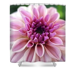 What A Beauty Shower Curtain