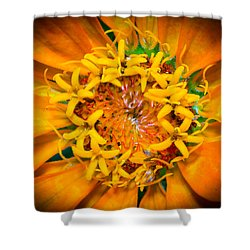 What A Bee Sees Shower Curtain
