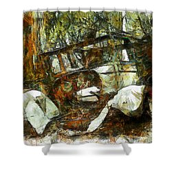 What A Ride Shower Curtain by Claire Bull