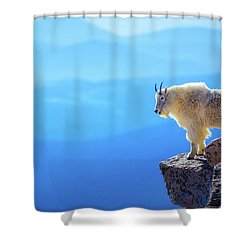 What A View Shower Curtain by John De Bord