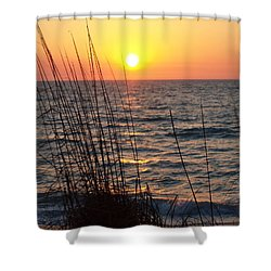 Shower Curtain featuring the photograph What A Wonderful View by Robert Margetts