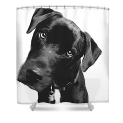 What Shower Curtain by Amanda Barcon
