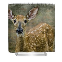What Big Ears You Have Shower Curtain