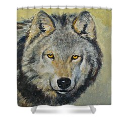 Heres Lookn At You..kid....kid....kid Shower Curtain by Cliff Spohn