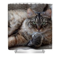 What Did You Say? Shower Curtain