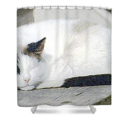What Do Cats Dream Of #2 Shower Curtain