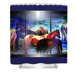 What  Horses Dream Shower Curtain by Hartmut Jager